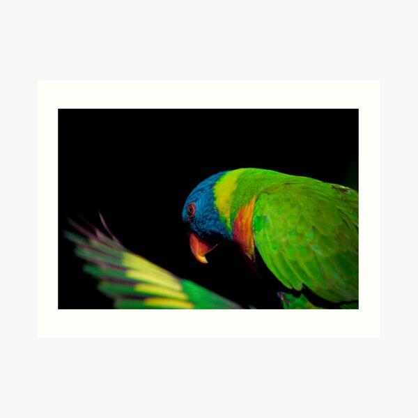 Rainbows #1 Art Print