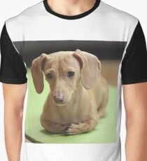 dachshund cream Graphic T-Shirt