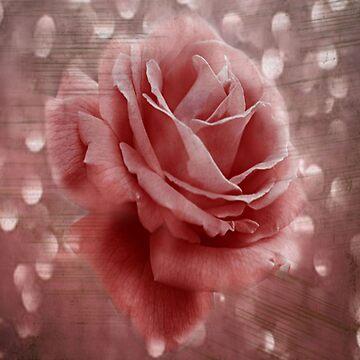 Vintage Dusty Rose by JudyPalkimas