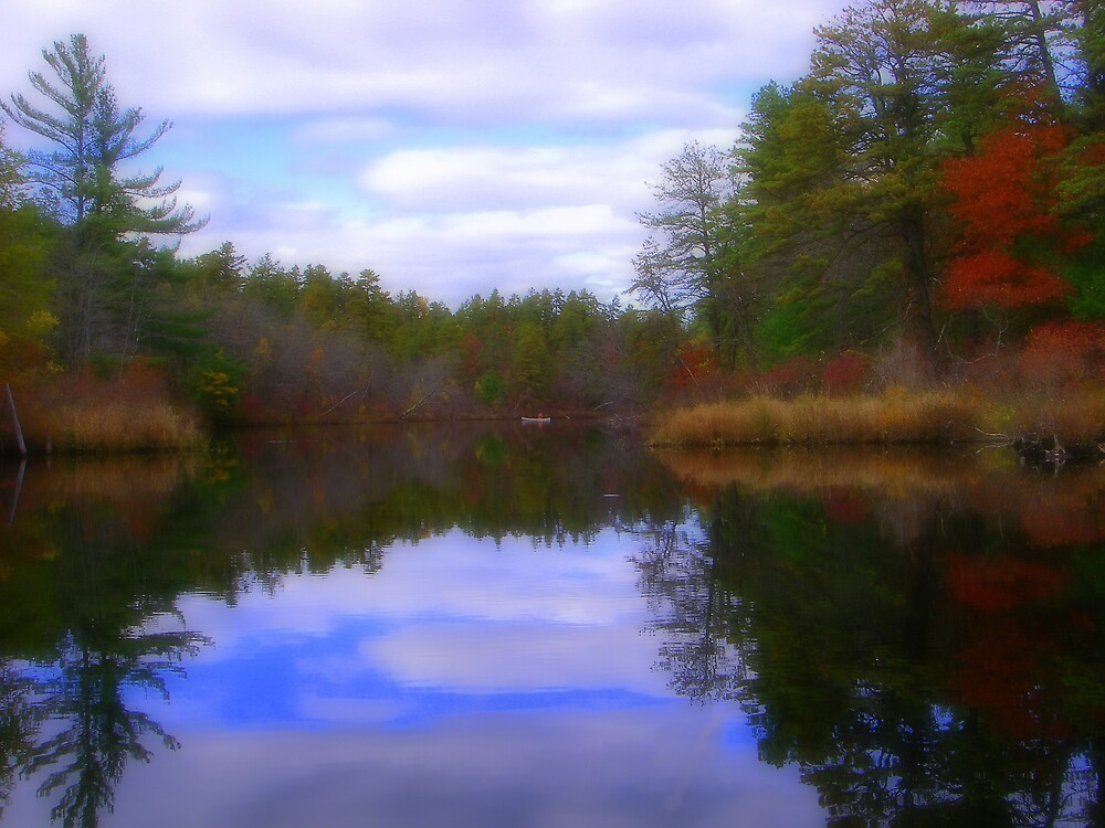 A Maine Pond Full of Fall Color by jpooler