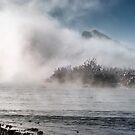 Peeking through the Icy Fog by Kasia-D