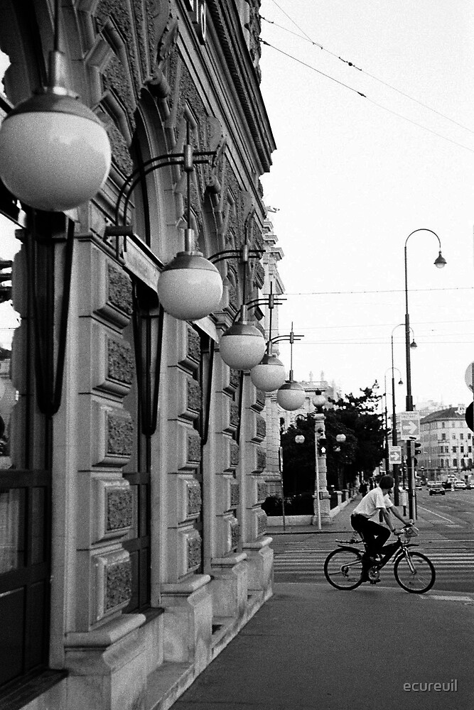 Cycling in Vienna by ecureuil