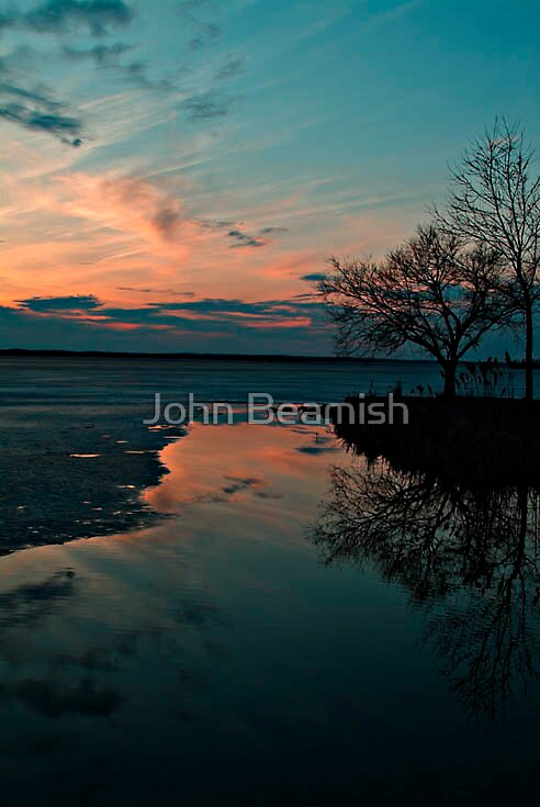 A Promise of Spring by John Beamish