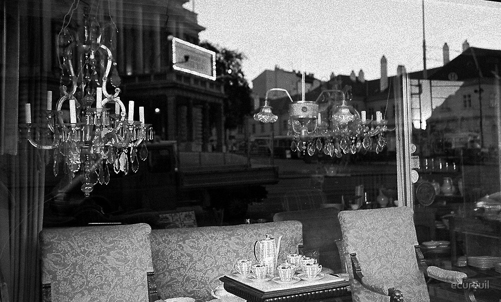 Vienna reflection by ecureuil