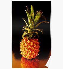 ANANAS COMOSUS alias pineapple - 1479 viewings Poster