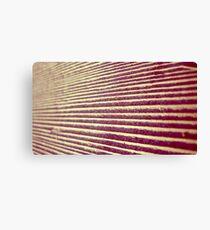 Macro Deck Canvas Print