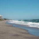 Coastal View by Donna Adamski
