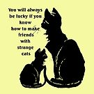 You Will Always Be Lucky If You Know How To Make Friends With Strange Cats by taiche