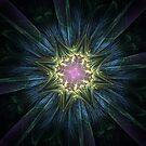 Star Dimensions by Barbara A Lane