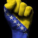Flagge von Bosnien-Herzegowina auf einer angehobenen geballten Faust von jeff bartels
