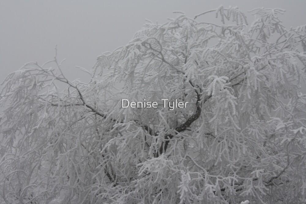 Frosty Magic by Denise Tyler