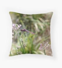 Roseate Skimmer (male) Throw Pillow