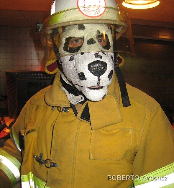 fireman dog by Robert Ordonez