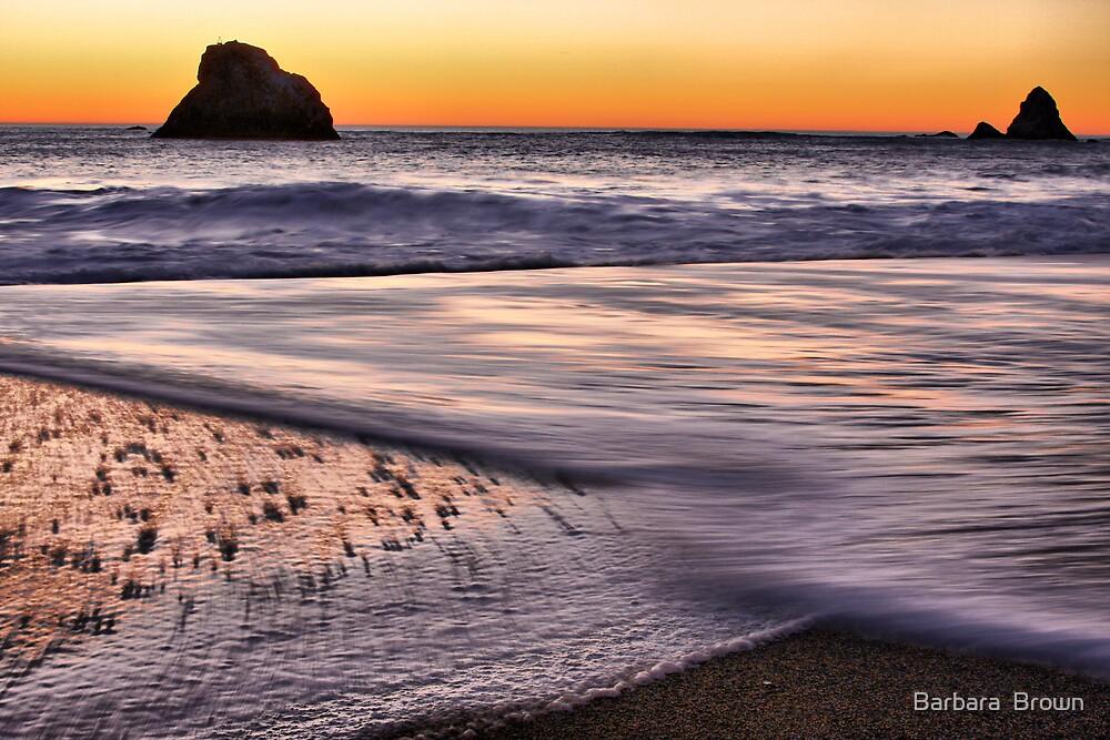 Beach Light by Barbara  Brown