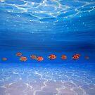 Ten Orange fish under the sea by Gill Bustamante