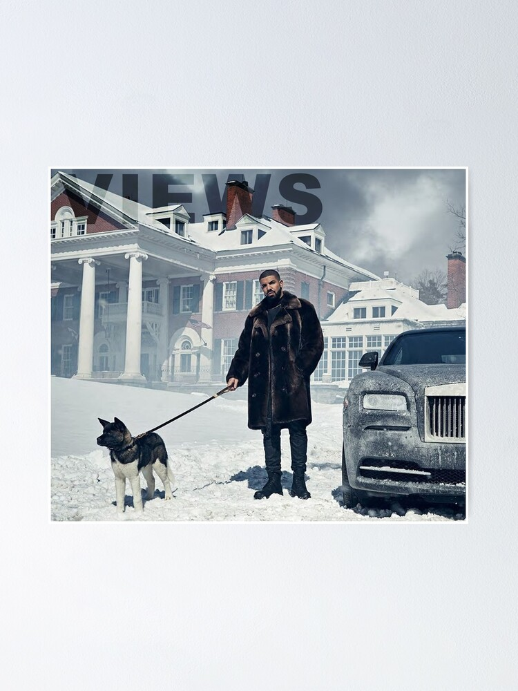 Alternate view of Drake with Dog Views Tapestry Poster