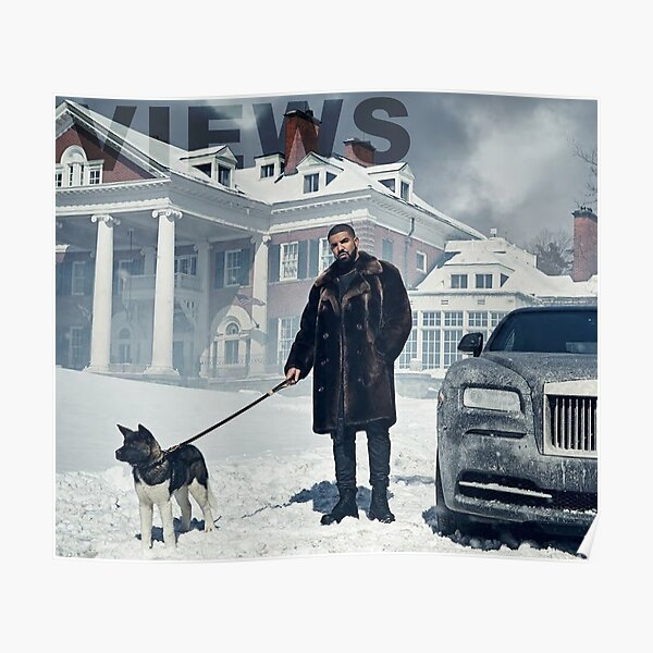 Drake with Dog Views Tapestry Poster