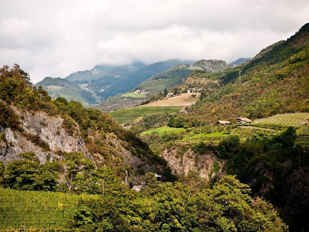 South Tyrol by Rae Tucker