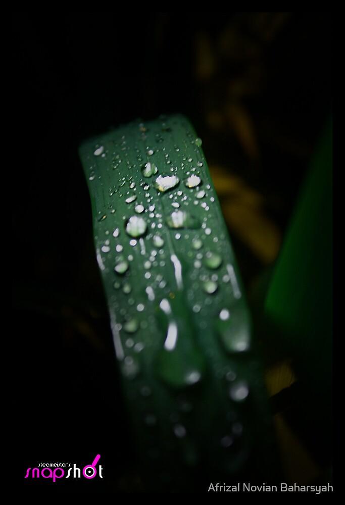 Rainy Night by Afrizal Novian Baharsyah