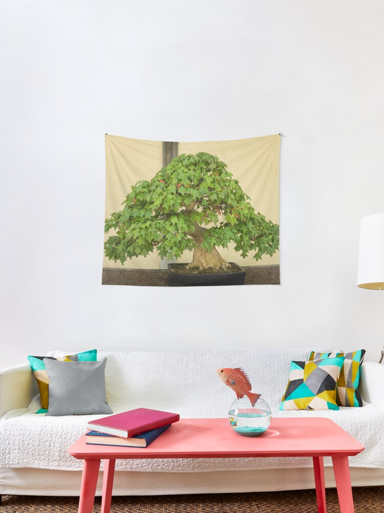 The Living Art Of Bonsai An Old Maple Tree In Miniature Tapestry By Georgiam Redbubble