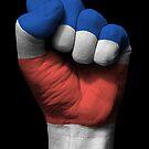 Flagge von Costa Rica auf einer angehobenen geballten Faust von jeff bartels