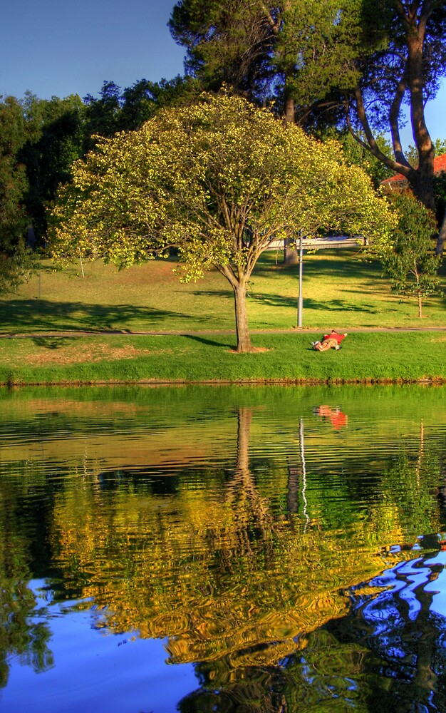 HDR torrens river by Cale Bowick
