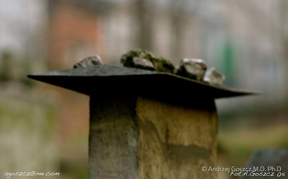 The Remu'h Cemetery. Kazimierz (Jewish Quarter). Brown Sugar Story. Views (1149) favorited by (1) Shalom ! thank you ! dziękuję ! Toda raba zeh hachever sheli ! by © Andrzej Goszcz,M.D. Ph.D
