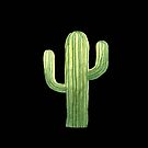 Beautiful Green Cacti Succulent on Black Design VI by DesertDecor