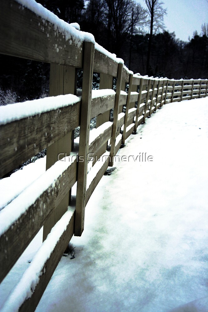 Fence by Chris Summerville