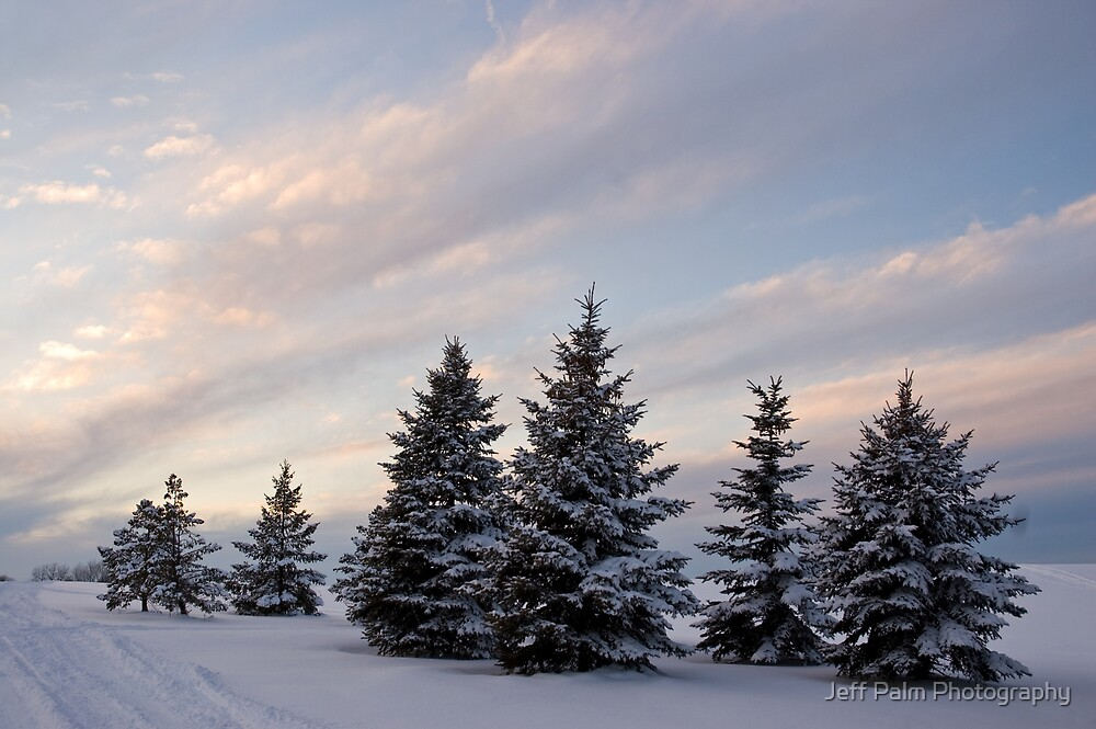 Winter Bliss by Jeff Palm Photography