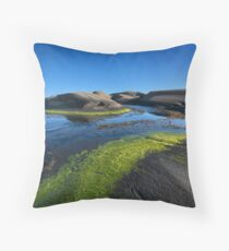 carved island Throw Pillow