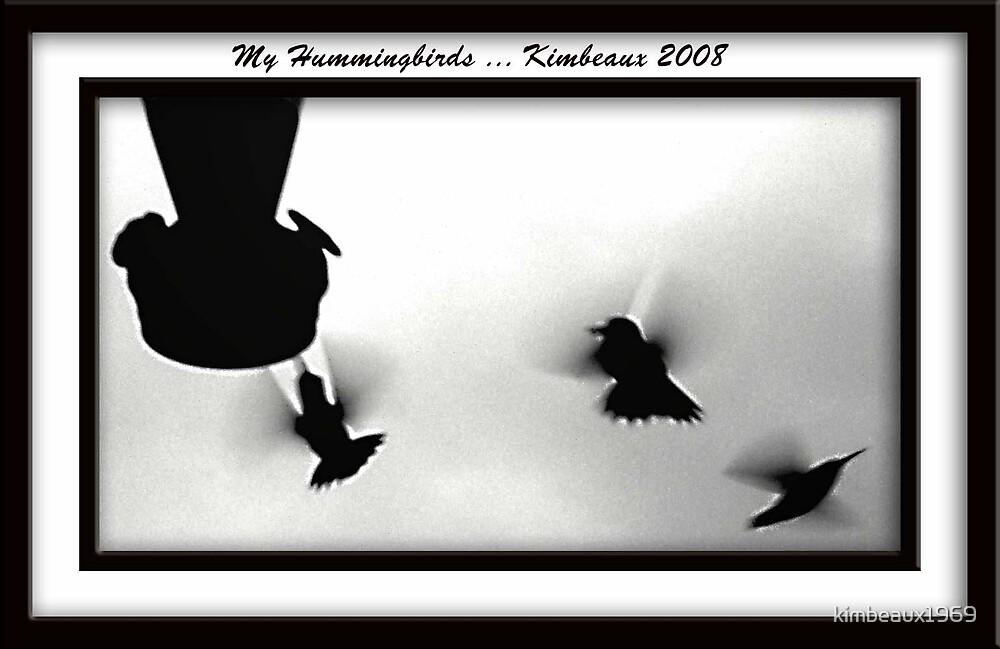 My hummingbirds by kimbeaux1969