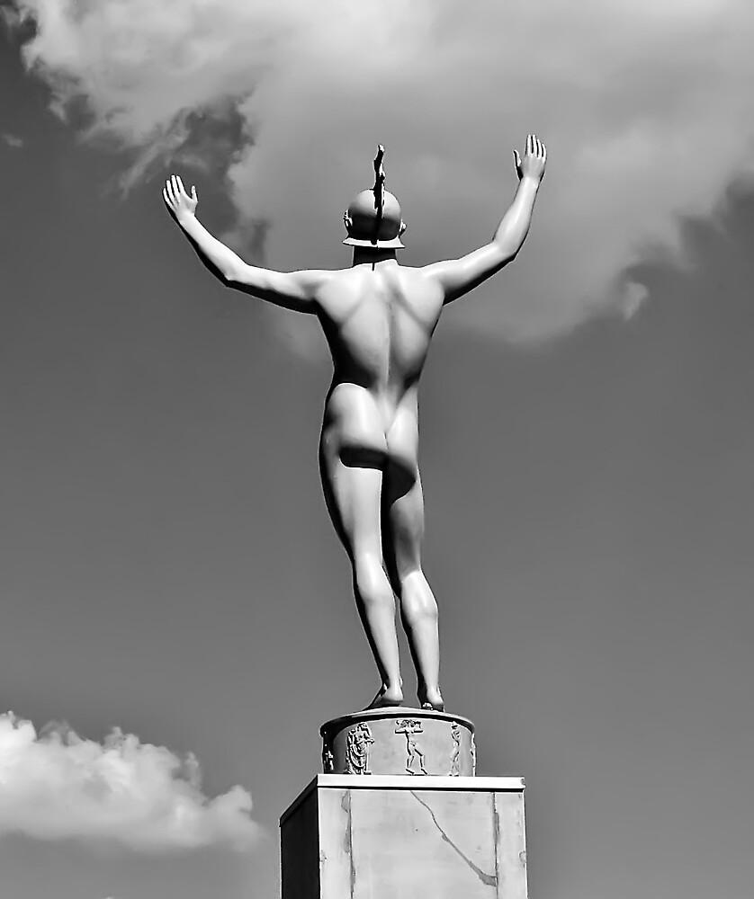 Apollo, Rear View by Tracy DeVore