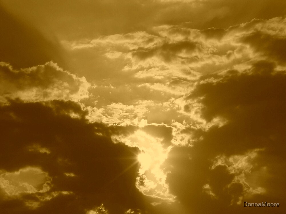 Heaven in sepia..... by DonnaMoore