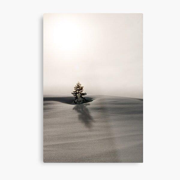White Nature Metal Print