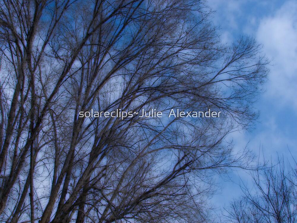 Cool blue by solareclips~Julie  Alexander