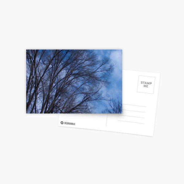 Cool blue Postcard