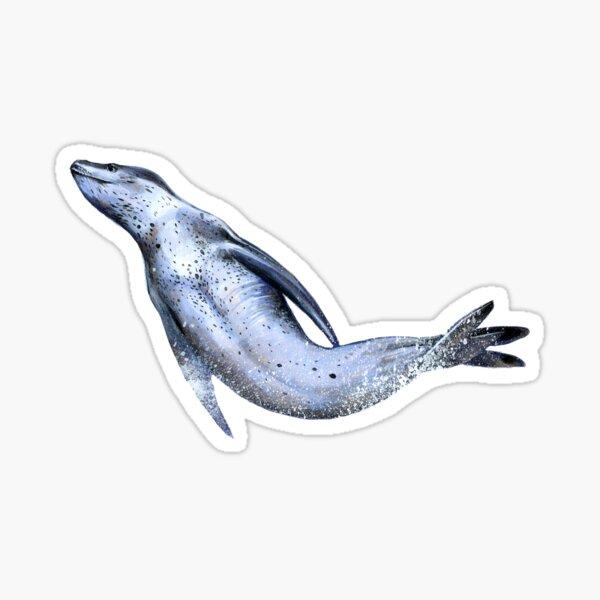 Leopard Seal Sticker