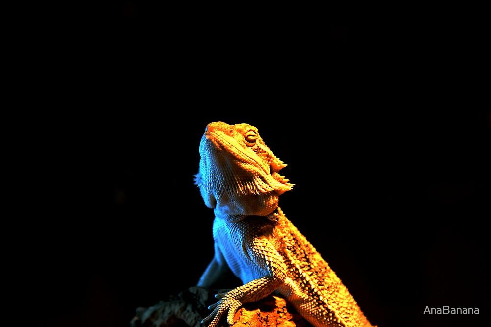 lizard by AnaBanana