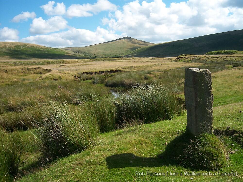 Dartmoor: Taw Marsh by Rob Parsons