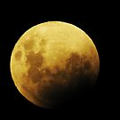 Umpteenth gazzilion moon shot eclipse by adbetron