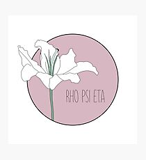 Rho Psi Eta Lily - Dusty Pink Photographic Print