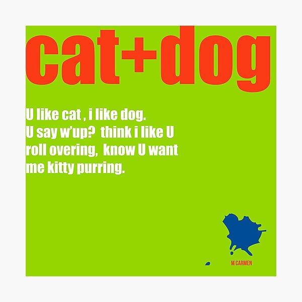 cat+dog Photographic Print
