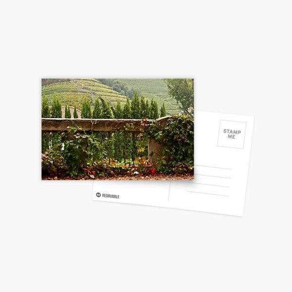 Scenes of Autumn Postcard