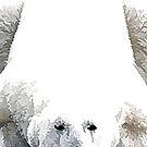 Eisbär - Rot von Marlene Watson