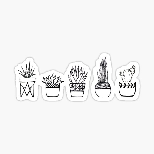 Cacti and Succulents Line Drawing Sticker