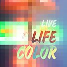 Live Your Life in Color Mosaic Stained Glass by Beverly Claire Kaiya