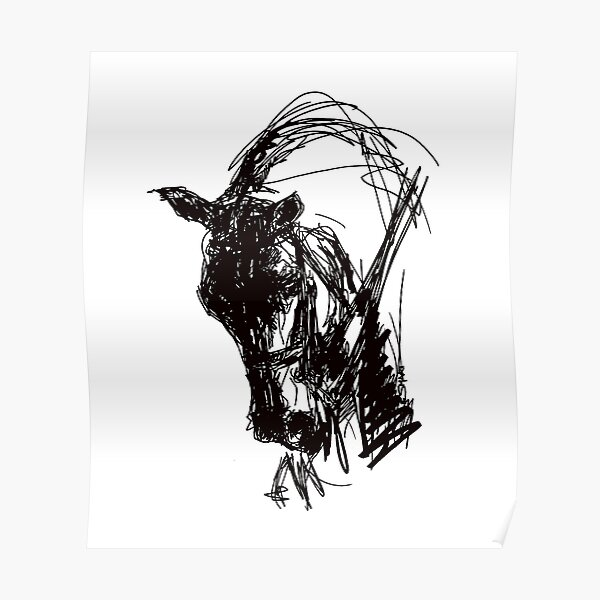 Dressage Horse Drawing  Poster