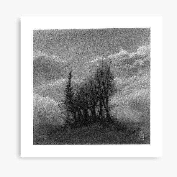 bosquet d'arbres au fusain - paysage - carré Impression sur toile