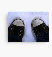 2feet of snow Canvas Print